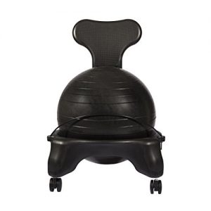 LuxFit Office Ball Chair